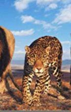 Best friends with Robert Irwin by QueenGemini2005