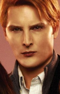 Mein Leben bei denn Cullens.Twilight cover
