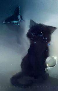 Recueil des photos de mon chaton...💖💖 cover