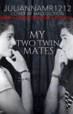 My Two Twin Mates by Juliannamr1212