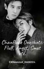 ChanBaek One Shots: Fluff, Angst, Smut, etc. by EXOMonstaX_04080514