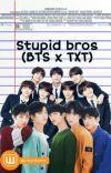 Stupid Bros (BTS ❌ TXT) cover