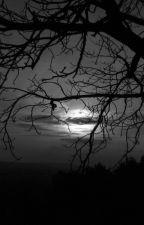 Aflicciones Nocturnas by DN232CS