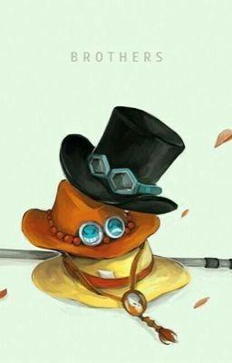 [Đn One Piece] Xin chào, thế giới!
