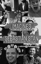 Sebastian Stan Imagines  by SebMakesMeHappy