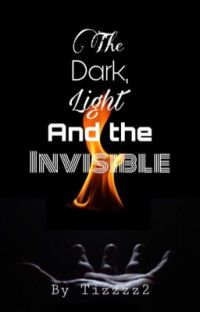 The Dark, Light and the Invisible cover