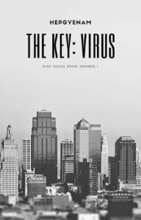 RISK SERIES 1: The Key by HEPGYENAM