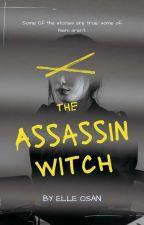 刺客女巫系列 by st8208