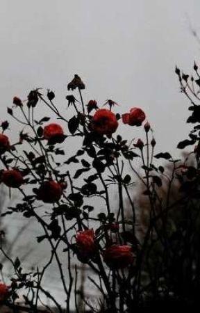 𝑴𝒐𝒅-𝑮𝒓𝒂𝒎 by _Dark___