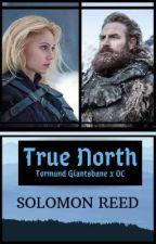 True North (Tormund x OC) by SolomonReed