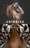 Animales    Joerick Chrisdiel    Terminada cover