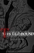 Twisted Bound by ashandroch