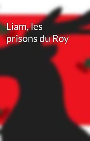 Liam, les prisons du Roy by Blattye
