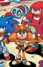 Ask or dare sonic boom by Midnightshards2003