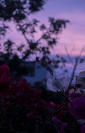 poetic beauty / johnjae by dubumochi