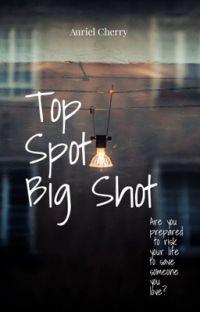 Top Spot, Big Shot  cover