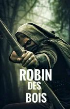 Robin Des Bois ( LOTR ) by TomHiddlestoff