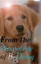 B Dawg's Perspective by B_Dawg_Buddy