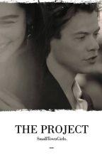The Project od Smalltowngrls