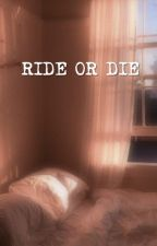 ride or die || minsung by renshuxii