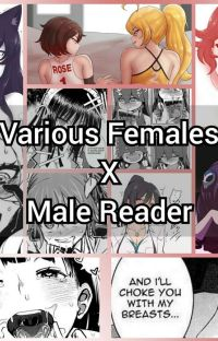 Various Females x Male Reader cover