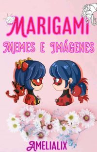 Marigami (Memes e Imágenes) cover