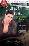 Car Wash Boys Series 1: Prince Daryl Rivera cover