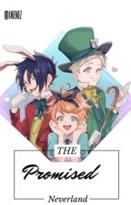 The promised neverland X Reader by IMEMEZ