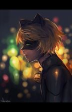 Simply The Best (ChatNoir/Adrien x Reader) by Spoiled_Royalty