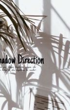 Shadow Direction by absurdtheacc