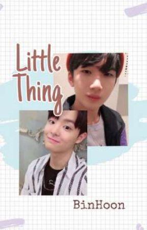 [✓] Little Thing ㅡBinHoon by Baestuff