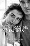 Mientras Me Busques (1º) © cover