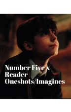Five x reader (one shots/imagines) by Crazy-Otaku-demigod