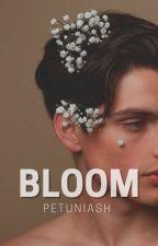 Bloom by petuniash