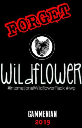 GAMMENIAN 2019 by Inter_WildflowerPack