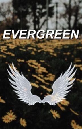 evergreen | destiel by vagabondboy