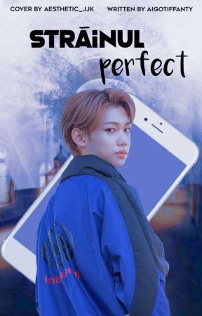 Străinul Perfect by AigoTiffany