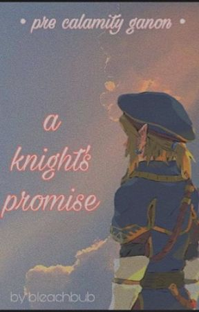 a knight's promise // botw link x reader by bleachbub