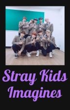 Stray Kids Imagines by Felixthecat0325