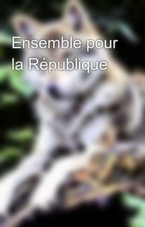 Ensemble pour la République by Monarchy_de_France