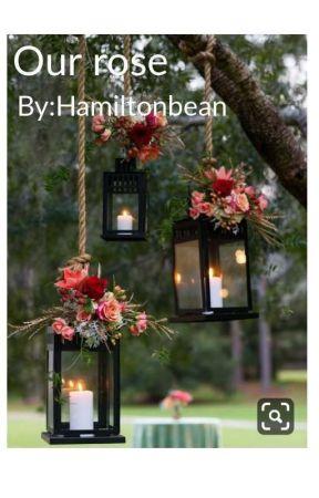 Our Rose by hamiltonbean