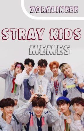 STRAY KIDS MEMES by Zoralineee