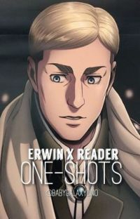 Erwin x Reader (ONE-SHOTS) // Attack On Titan  cover