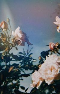 Amor De Verano | Yoonmin cover