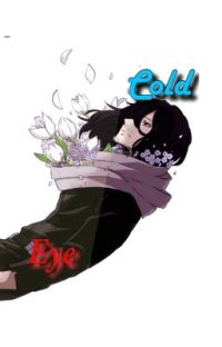 Cold Eye (Aizawa Shouta x Villain Reader) cover