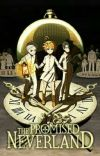 The promised Neverland ff cover