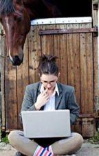 Equestrian poll by slambourne