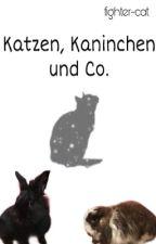 Katzen, Kaninchen und Co. by fighter-cat