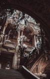 𝑅𝐴𝐼𝑁 𝑂𝐹 𝑃𝐸𝑇𝐴𝐿𝑆   OC'S BOOK cover