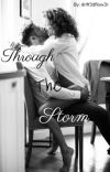 Through The Storm cover
